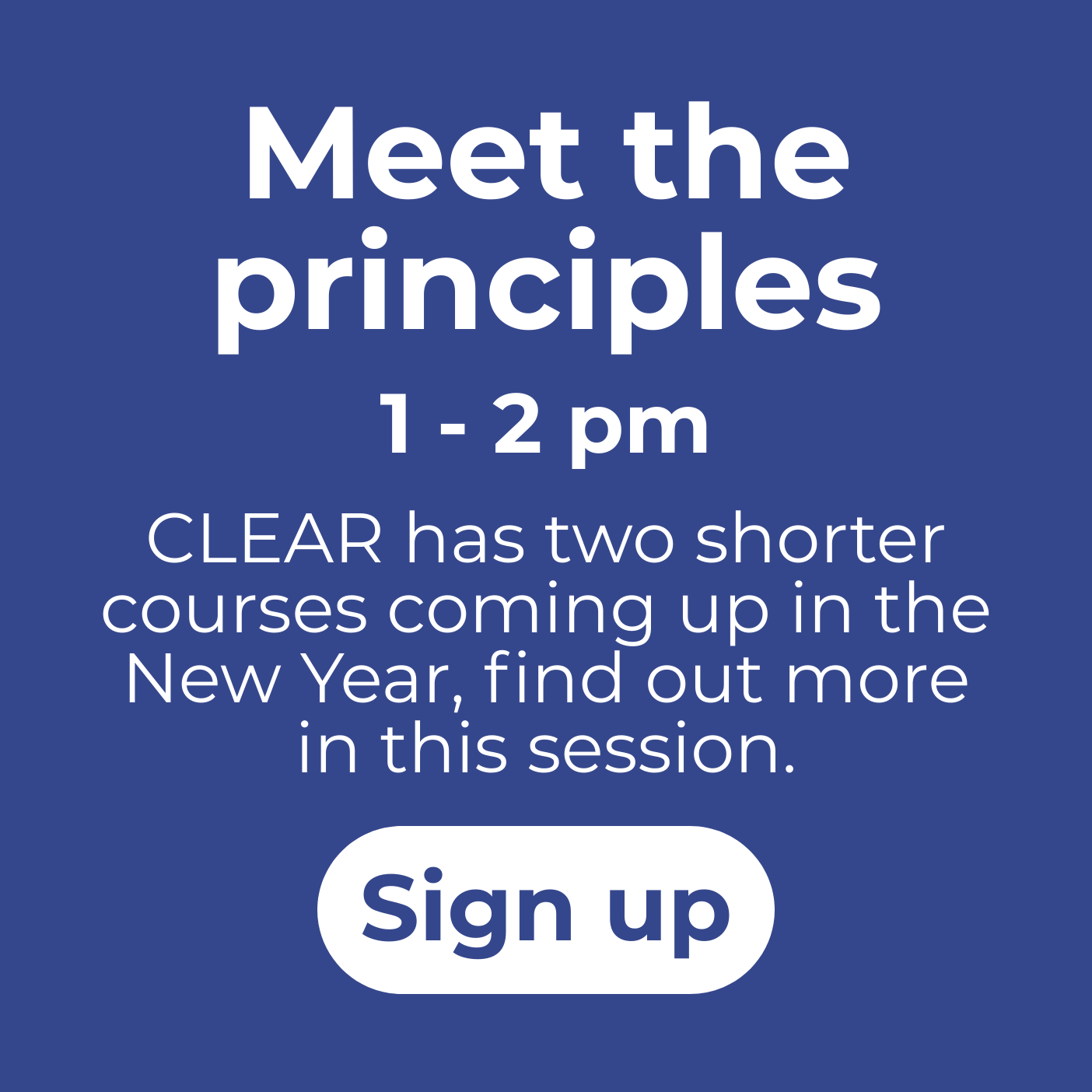 Meet the principles session